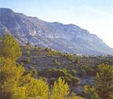 Img 1: Naturpark Montgó