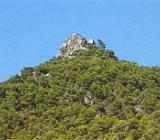 Img 1: Le Parc Naturel du Carrascar de la Font Roja