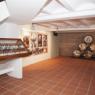 Museo de la Fiesta de la Vendimia Requena
