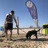 Playas petfriendly en la Comunitat Valenciana
