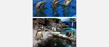 103_es_imagen3-oceano2.jpg