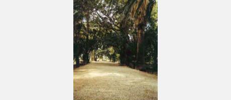 Img 1: Gärten der Villa Marco