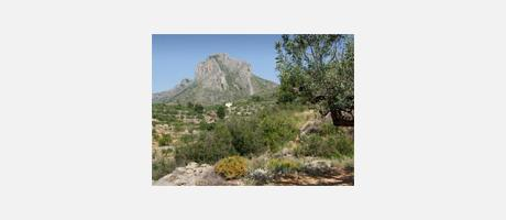 Img 1: Paisaje Protegido La Solana de Benicadell