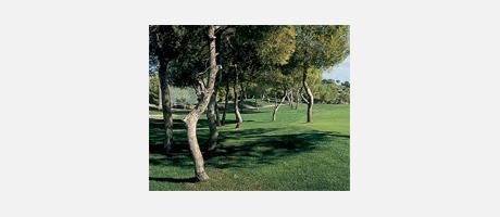 Img 1: Club de Golf Las Ramblas de Orihuela