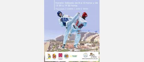 Img 1: Open Internacional de Taekwondo 2013. Oropesa del Mar