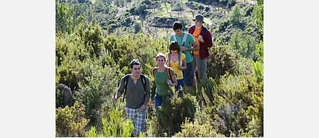 Grupo de senderistas siguiendo una senda