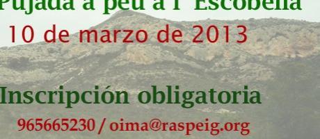 Img 1: XI Pujada a Peu a l'Escobella 2013. XXI Jornadas de Medio Ambiente.