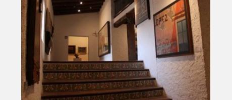 Museo de Arte Contemporaneo 5