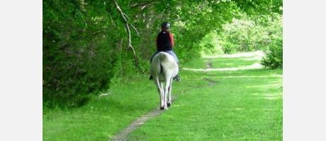 Ruta a caballo. Cofrentes Turismo Activo