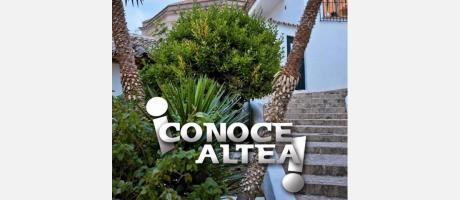 ¡CONOCE ALTEA!
