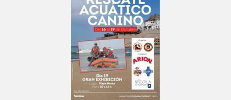 En la playa Norte de Peñiscola, del 16 al 19 de Octubre