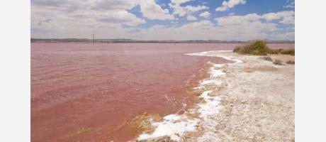 La laguna rosa