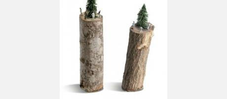 Dos troncos