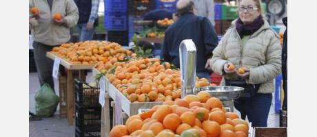 Naranjas de Castellón 3