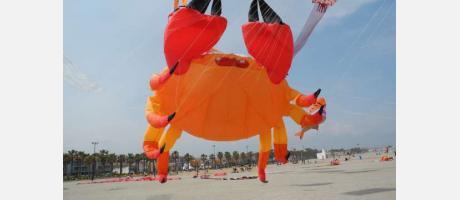 Un enorme cangrejo volador