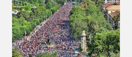 Imagen del Paseo de la Alameda llena de corredores