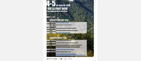 Programa Día Mundial del Medio Ambiente