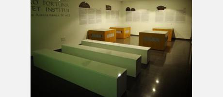 MUSEO VILLA ROMANA PLAYA ALBIR