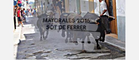 Cartel Semana Taurina en Sot de Ferrer