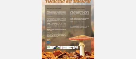 Jornadas Micológicas Vistabella del Maestrazgo 2016