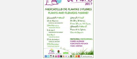 """Mercadillo de plantas y flores """"Un Pilar de Flores"""" en Pilar de la Horadada 2017"""