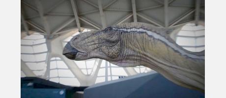 Dinosaurios_valencianos_Img8