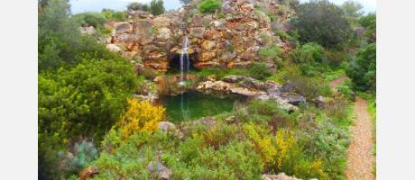 Pedreguer_Jardín Mediterráneo Albarda_Img6