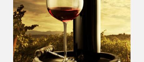 Live & Enjoy Ruta del Vino
