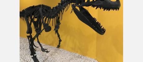 Dinosaurio en el Museo de las Ciencias Naturales