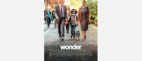 WONDER ONDA 2018
