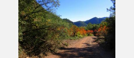 Camino Jiquer en la Sierra de Espadán