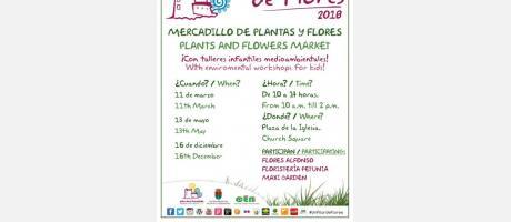 """Mercadillo de plantas y flores """"Un Pilar de Flores"""" en Pilar de la Horadada 2018"""