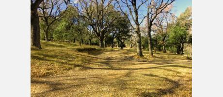 Vista del Parque El Rivet en Benassal