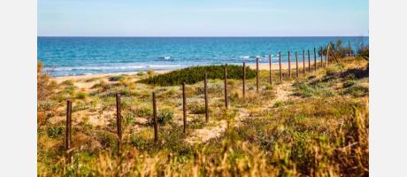 Playa en Guardamar