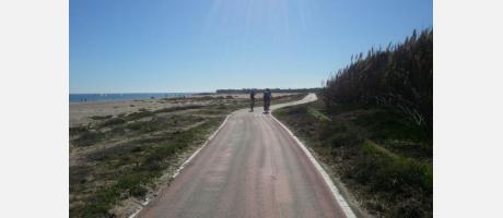 Bici Albufera 3