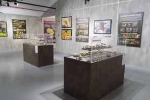 Feria micológica de Ibi