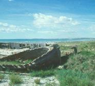 Img 1: Playa El Pinet