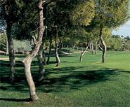 Club de Golf Las Ramblas de Orihuela