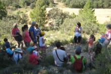 Discover apicultural tourism with ApiVillores