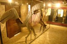 Pasa un día entre dinosaurios en Cinctorres en el parque Dinomania