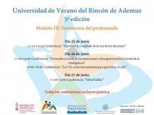 conferencias módulo III