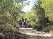 Itinerario ecuestre IE - 005 Llíria - Montes de la Concòrdia