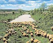 Von Barracas nach Sagunto
