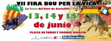 VII Fira Bou per la Vila Castellón 2014