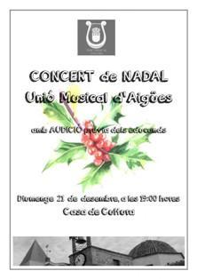 Concierto de Navidad en Aigües 2014