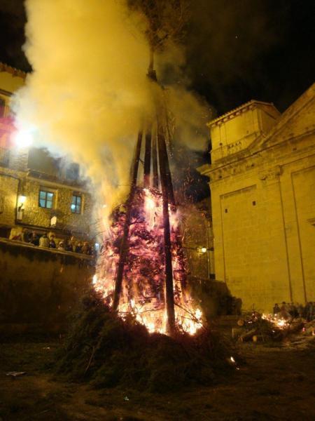 Fiestas de San Antonio Abad 2015