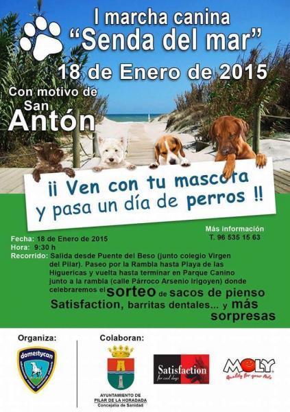 San Antón en Pilar de la Horadada 2015