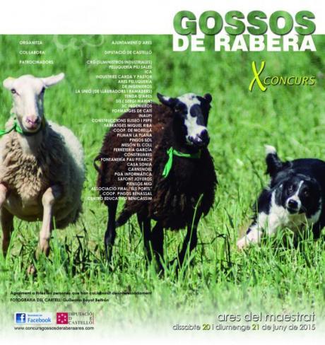 Concurso de perros pastores de Ares del Maestre