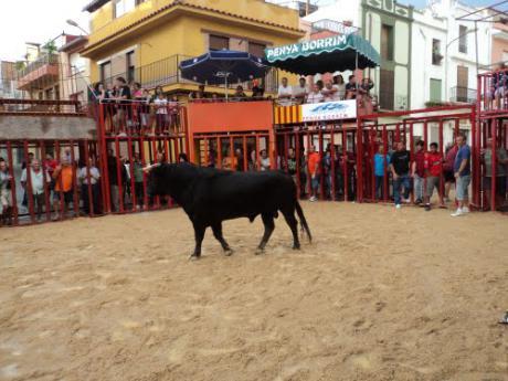 Fiestas Patronales de la Asunción en Benlloch
