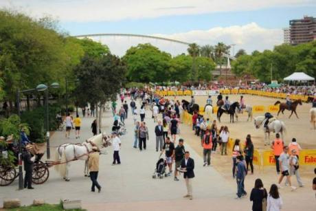 Valencia a lomo de Caballo